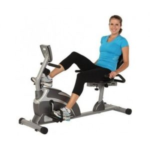 Exerpeutic Magnetic Hig Capacity Recumbent Exercise Bike for Seniors