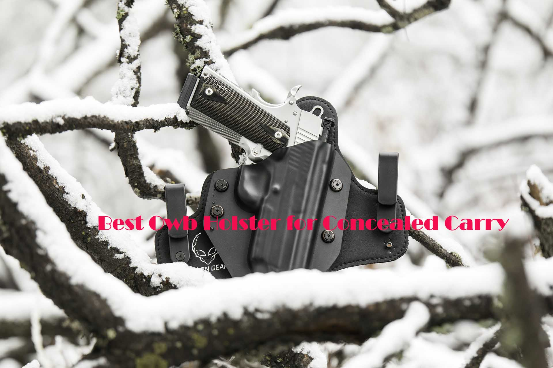 10 Best Owb Holster for Concealed Carry 2019 (Detailed