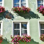 Helpful Hints For Sucessful Window Boxes