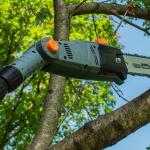 Best Electric Tree Pruners Reviews